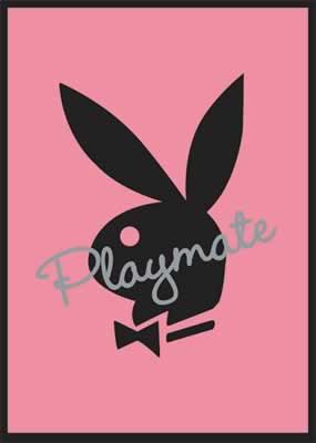 PLAYBOY - PLAYMATE