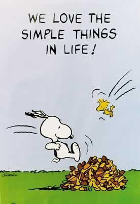 Peanuts The Simple Things - Poster