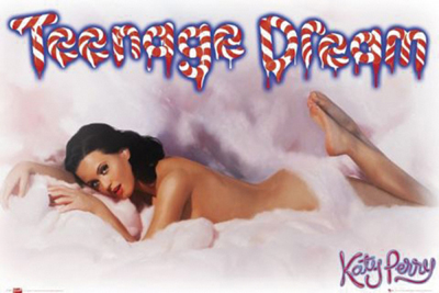 Katy Perry Poster Teenage Dream