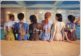 Pink Floyd Poster Bodypainting Album Covers