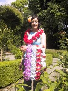 Carnation Combo in assortierten farben