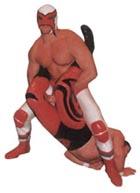 about wrestlingmaniac.ch