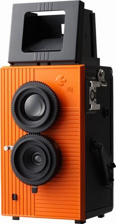 Blackbird - Orange