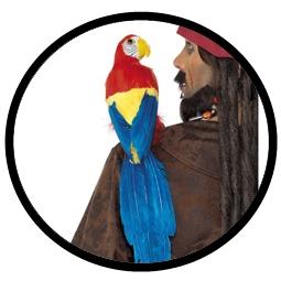 Papagei Attrappe - Klicken für grössere Ansicht