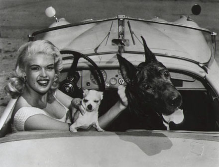 Jayne Mansfield - Car & Dogs