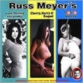 1 x RUSS MEYER'S - GOOD MORNING AND GOODBYE!/CHERRY HARRY & RAQUEL/MONDO TOPLESS