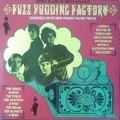 VARIOUS ARTISTS - Incredible Sound Show Stories Vol. 12 - Fuzz Pudding Factory