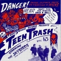1 x JAYBIRDS - TEEN TRASH VOL. 13