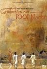 Geschichten aus 1001 Nacht (DVD)