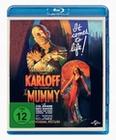 Die Mumie (OmU)