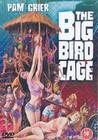 BIG BIRD CAGE  (DVD)