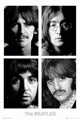 Beatles Poster White Album