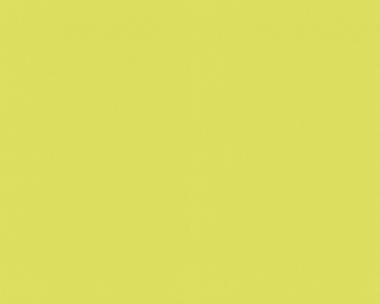 Tapete - Contzen 3 - Uni - Grün
