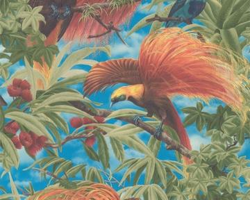 Tapete - Faro - Vögel Grün